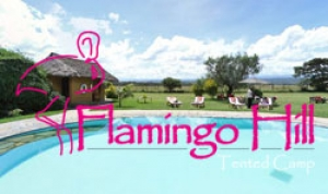 Flamingo Hill Camp