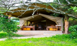 Bogani Cottages and Tented Camp Maasai Mara